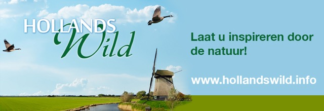 Hollands wild adv banner 829x283px
